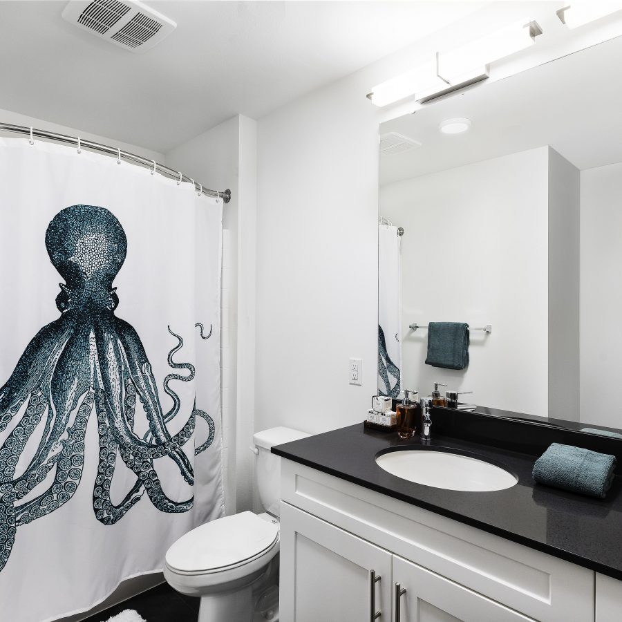 Bathroom at Apartment in South Seattle, WA